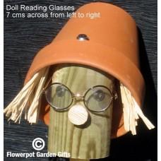 Optional Reading Glasses