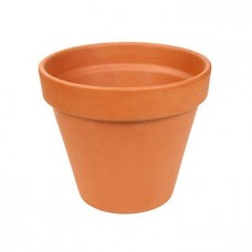 Replacement Terracotta Pot