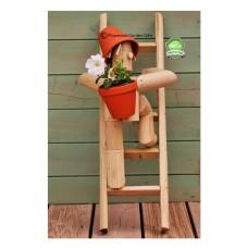 Ladder Climber